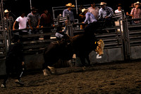 20090925Ranch-Rodeo_DSC0910.jpg